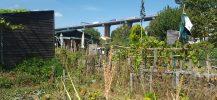 Jardins familiaux Bacalan Les jardins d'aujourd'hui Bordeaux