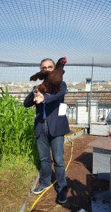 Pierre Hurmic dans le poulailler sur le toit du Réseau Paul Bert Bordeaux